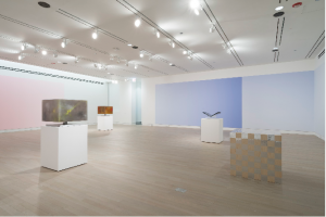 Installation view: The Fifth Dimension at Logan Center Gallery, featuring work by Pieter Vermeersch (background), and (from left to right) Geof Oppenheimer, Tauba Auerbach and Karl Holmqvist. Photo: Jim Prinz
