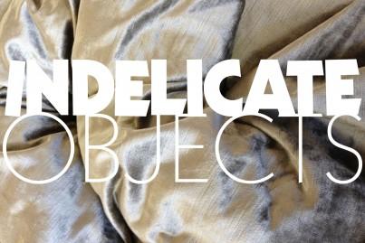 Indelicate-403x269