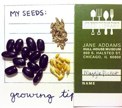 seeds_hullhouse