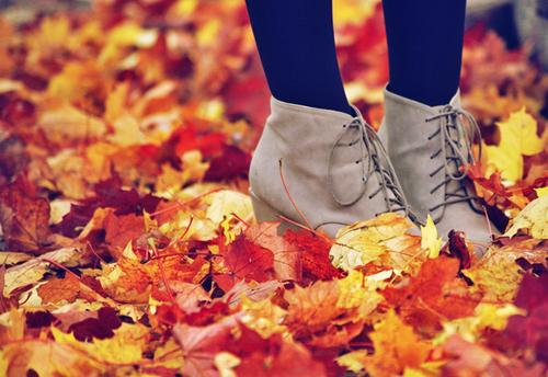 Fall Clothing Essentials