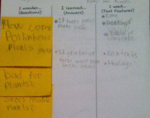 Student work using reading strategies taught